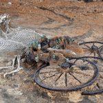 Ancient Bulgaria tour